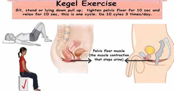 Kegel Exercise Gds